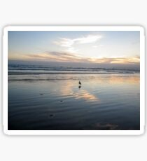 Lone Seagull on the Beach Sticker
