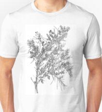 Wattle- Acacia fimbriata- graphite T-Shirt