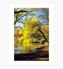 Autumn in Central Park, New York City Art Print