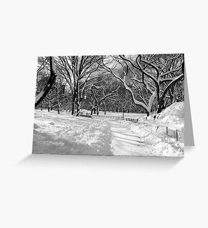 Winter Wonderland, Central Park Greeting Card