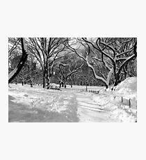 Winter Wonderland, Central Park Photographic Print