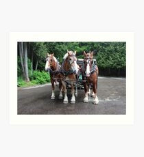 Mackinac Team I Art Print