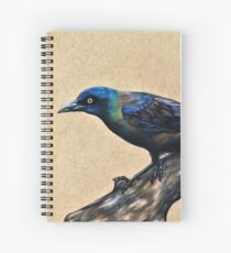 Grackle Bird Spiral Notebook