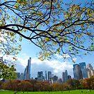 Autumn in New York City  by Alberto  DeJesus