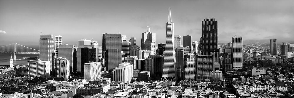 Downtown San Francisco by Radek Hofman