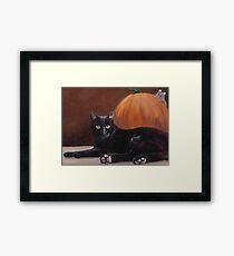 Sneak Peek Black Cat & Pumpkin Framed Print