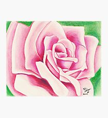 A Pink Rose by any Other Name Photographic Print