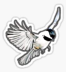 Black Capped Chickadee Sticker
