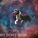 A Phocid in Space (Adopt Don't Shop) by flapsofdestiny