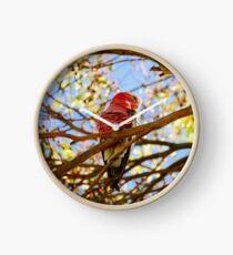 Ruffled Feathers Clock