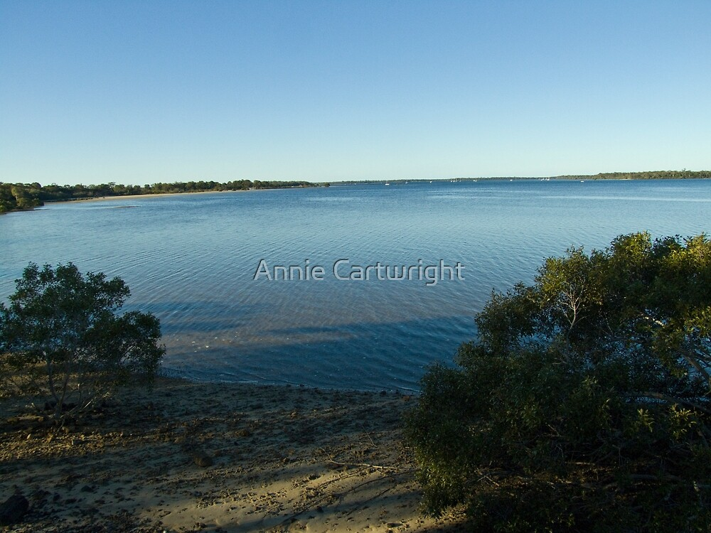 TIN CAN BAY by Annie Cartwright