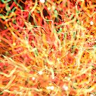 rainbow melt by david gilliver