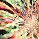 fireworks 9/12/14 by david gilliver