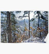 Snow in the Moutains of South Korea Poster
