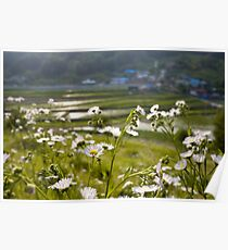 Wildflowers and a village in South Korea Poster
