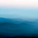 Windswept by Joanne Piechota