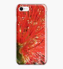 Callistemon Harkness iPhone Case/Skin
