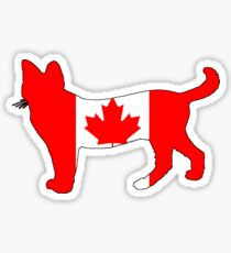 Canada Cat Sticker
