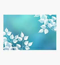 Blau Photographic Print