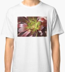 Love is.......Succulents.. Aeonium Classic T-Shirt