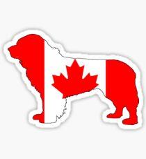 Canada Newfoundland Dog Sticker