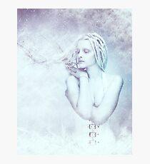 Thaw Photographic Print