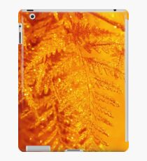 Gold Rush iPad Case/Skin
