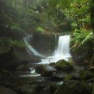 Horseshoe Falls, Tasmania by Ursula Rodgers Photography