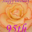 Happy 95th Birthday Flower by martinspixs