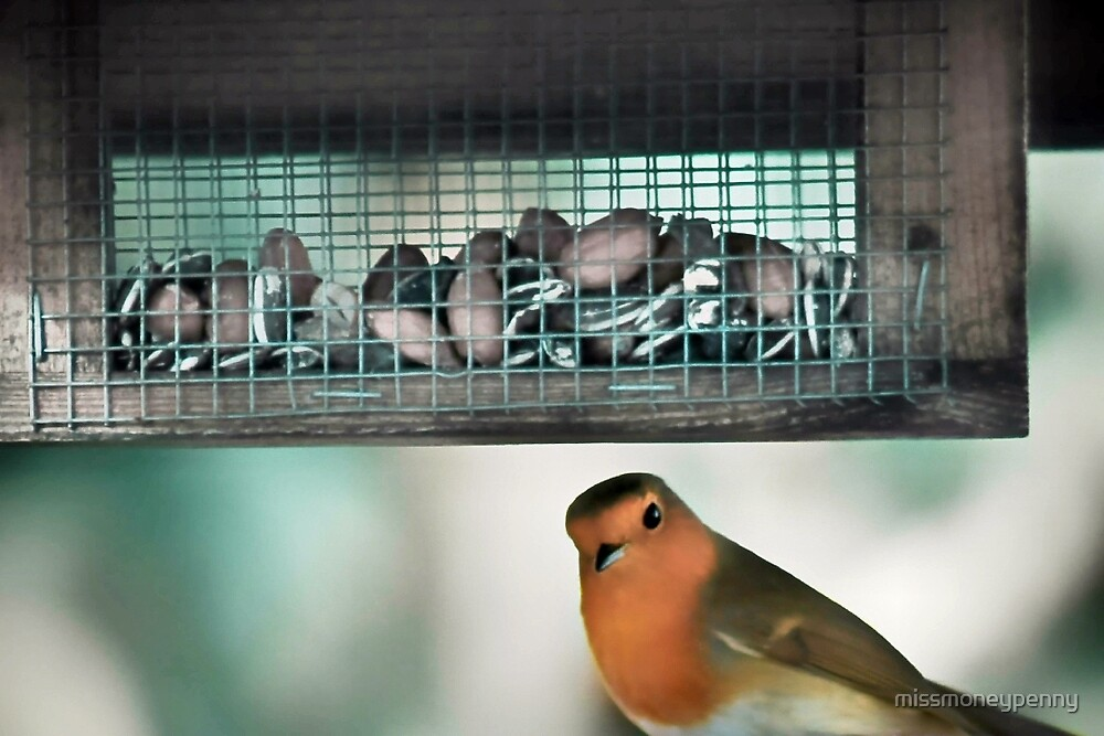 Seeds in a cage - now there's a twist by missmoneypenny