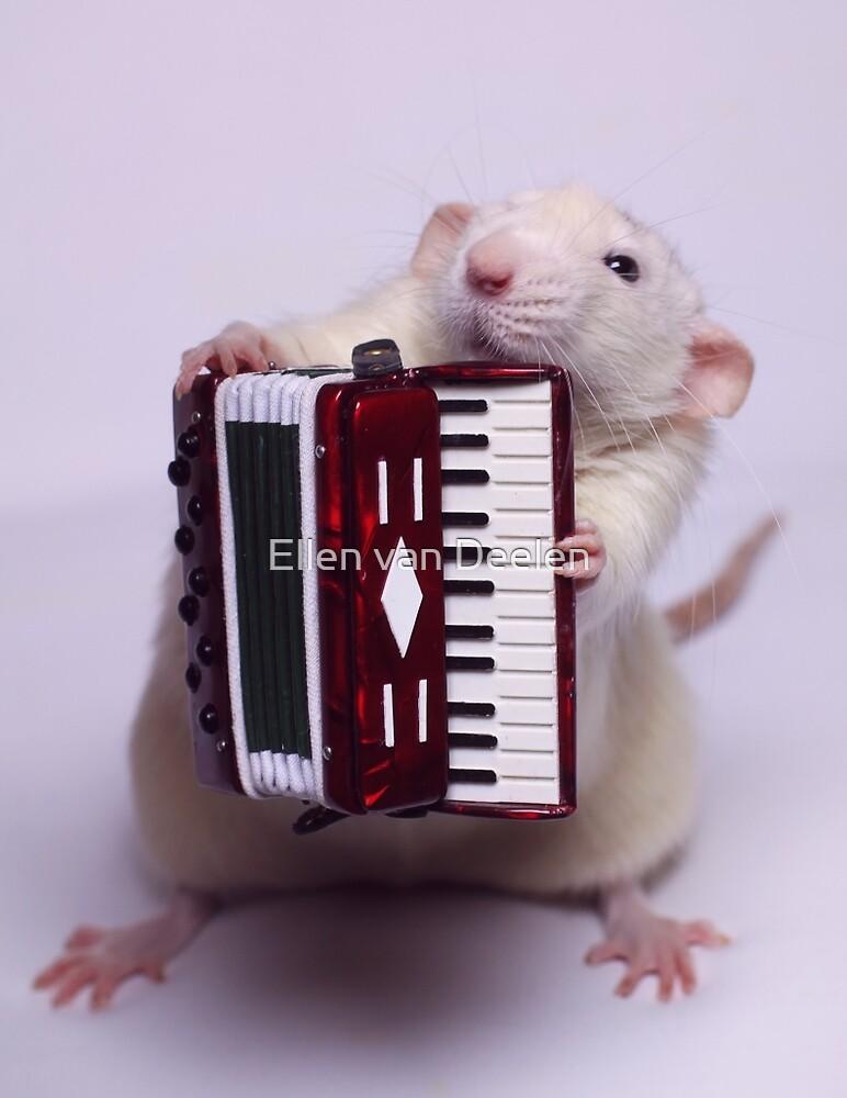 The accordeon. by Ellen van Deelen