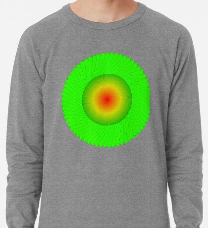 Processing Rainbow Spiral 002 Lightweight Sweatshirt