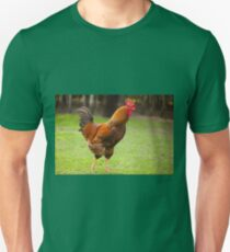 beautiful young Rhode Island Red Unisex T-Shirt
