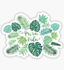Tropical Pura Vida Palm Leaves and Monstera Watercolor Sticker