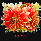 FEED YOUR SOUL DAHLIA INSPIRATIONAL QUOTE by Nicola Furlong