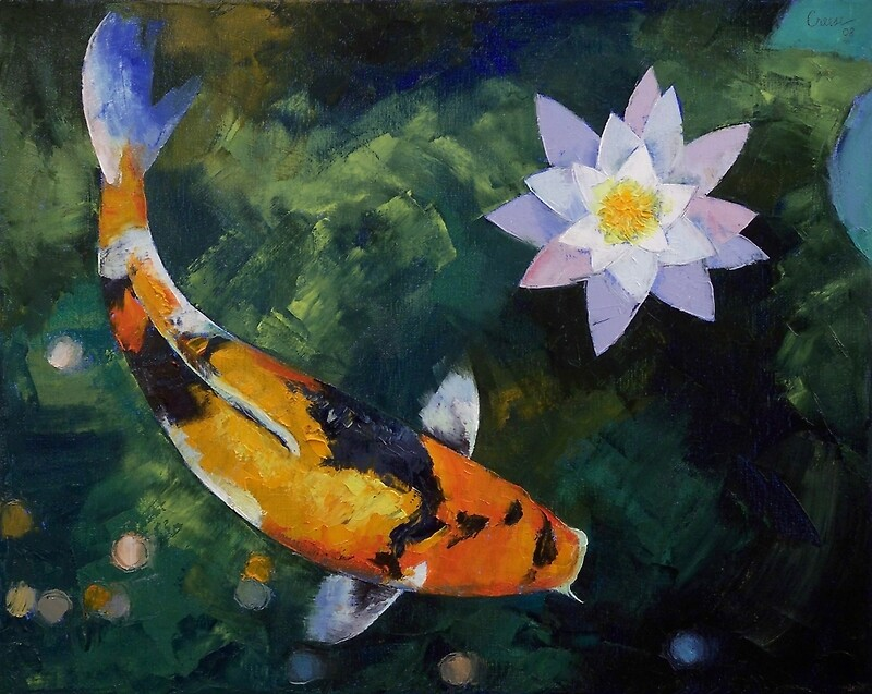 Quot Showa Koi And Water Lily Quot Photographic Prints By Michael
