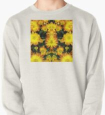 Reflections of Life Pullover