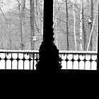 Birch Ridge Window by DreamCatcher/ Kyrah