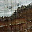 Landscape in stone by iamelmana