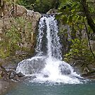 Waiau Falls, New Zealand by Margaret  Hyde
