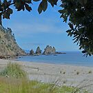 Otama Beach, New Zealand by Margaret  Hyde