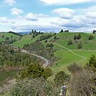 Scenery near Piriaka, New Zealand by Margaret  Hyde