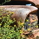 Ford in overgrowth  by GWGantt