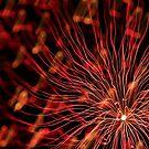 fireworks 4/10/14 by david gilliver