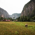 Harau Valley - West Sumatra - Indonesia by Erin McMahon