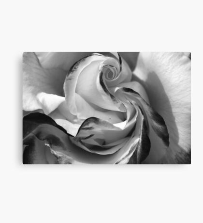 The Heart of a Rose, Black & White Canvas Print