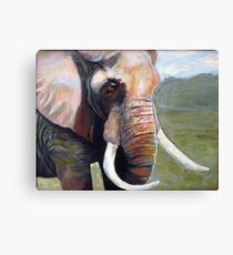 An Elephant Never Forgets Canvas Print