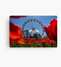 Floral Display - Canberra Canvas Print