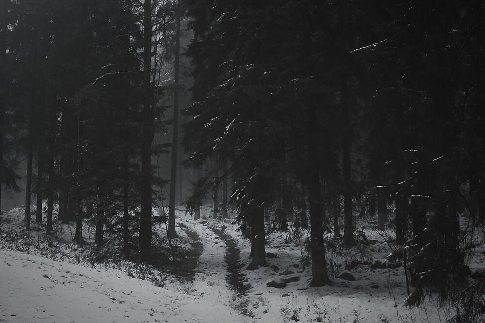 Passage I by KatieMetcalfe