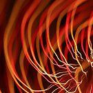 fireworks 18/1/14 by david gilliver